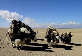 Kharta Valley Trekking