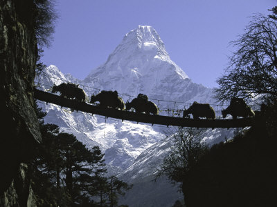 30 Days Amadablam Expedition Technical Climb